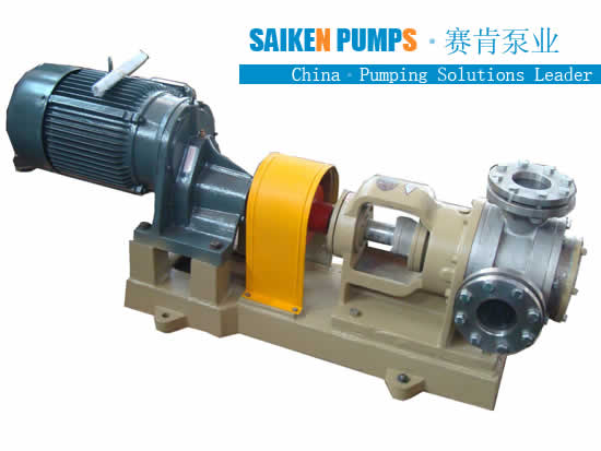 Stainless Steel Gear Pump Manufacturer, SS Gear Pump, Food Grade Pump Exporter
